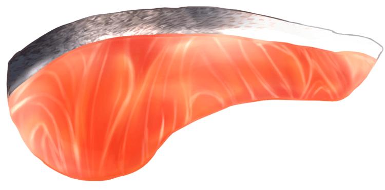 salmon_2056